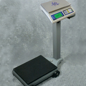 Fairbanks 1129 Counting Scale
